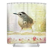 Curious Catbird Shower Curtain