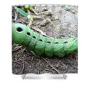 Curious Caterpillar Shower Curtain