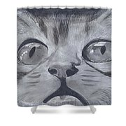 Curious Eyes Shower Curtain