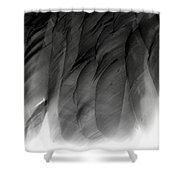 Curious Flight - Break Free Shower Curtain