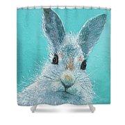 Curious Grey Rabbit Shower Curtain