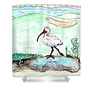 Curious Ibis Stands By Shower Curtain