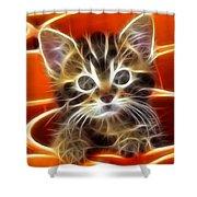Curious Kitten Shower Curtain by Pamela Johnson