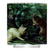 Curious Kittens Shower Curtain