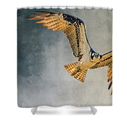 Curious Osprey Shower Curtain