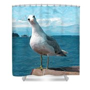 Curious Seagull Shower Curtain