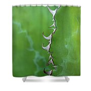 Curly Agave Shower Curtain