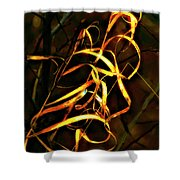 Curly One Shower Curtain