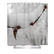 Curtailed Bloom Shower Curtain