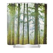 Curtain Of Morning Light Shower Curtain