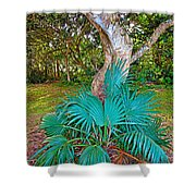 Curves And Fronds Shower Curtain