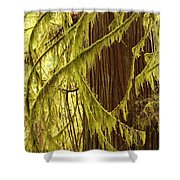 Curves In The Rainforest Shower Curtain