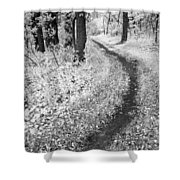 Curving Path Through Woods Shower Curtain