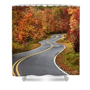 Curvy Road In The Mountains Shower Curtain
