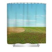 Curvy Rows Shower Curtain