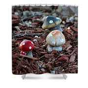 Cluster Of Toadstools  In Fairy Garden Shower Curtain