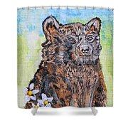 Cute Baby Black Bear Art Shower Curtain