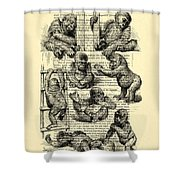 Baby Monkeys Playing Black And White Antique Illustration Shower Curtain