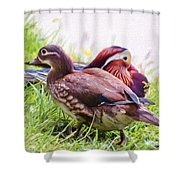 Cute Couple - Mandarin Ducks Shower Curtain
