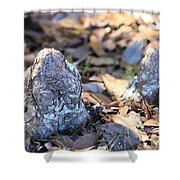 Cute Cypress Knees Shower Curtain