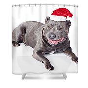 Cute Dog In Santa Hat Shower Curtain