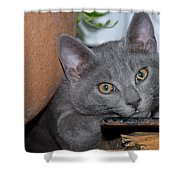 Cute Even If Looking A Bit Bored Shower Curtain