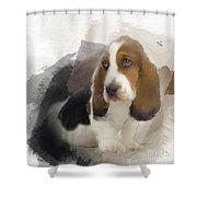 Cute Little Basset Artesien Normand Puppy Shower Curtain