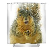 Cute Little Peanut Shower Curtain