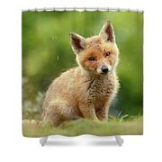 Cute Overload Series - Best Baby Fox Ever Shower Curtain