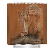 Cutting Horse Shower Curtain