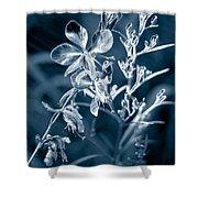 Cyanotype Morn Shower Curtain