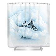 Cyanotype Poppy Shower Curtain