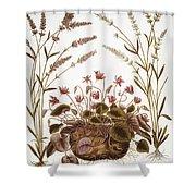 Cyclamen & Lavender, 1613 Shower Curtain