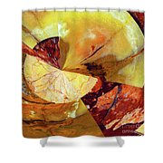Cycle Of Life Squared  Shower Curtain