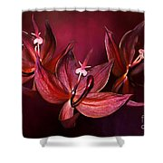 Cycnoches Cooperi Flowers Shower Curtain