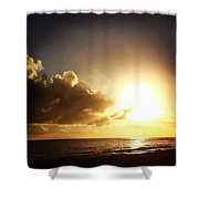 Cynthia Cell Shower Curtain