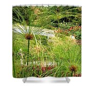 Cyperus Papyrus - Bulrush Shower Curtain