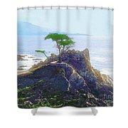 Cypress At Carmel Shower Curtain