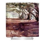 Cypress At Moss Beach Shower Curtain