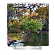 Cypress Bend Shower Curtain