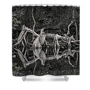 Cypress Design Shower Curtain