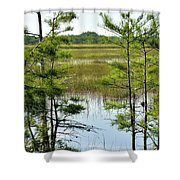 Cypress Dome Shower Curtain