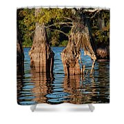 Cypress Grove One Shower Curtain