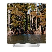 Cypress Grove Five Shower Curtain