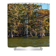 Cypress Grove Four Shower Curtain