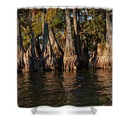 Cypress Grove Two Shower Curtain