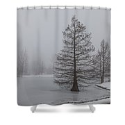 Cypress In The Fog Shower Curtain