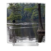 Cypress Lake Shower Curtain