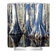 Cypress Reflection Shower Curtain