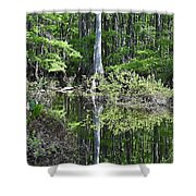 Cypress Slough Shower Curtain